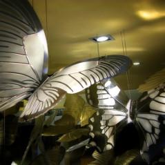 Motyle w centrum handlowym